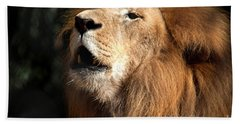 Beach Towel featuring the photograph Roar - African Lion by Meg Rousher