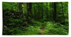Beach Towel featuring the photograph Roaring Fork Trail by Debbie Green