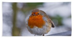 Robin 1 Beach Towel by Scott Carruthers