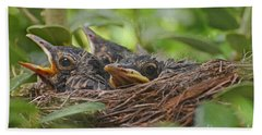 Robins In The Nest Beach Towel by Debbie Portwood