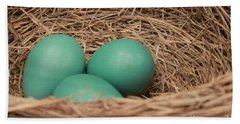Robins Three Blue Eggs Beach Sheet