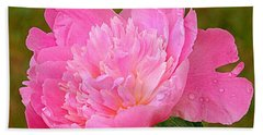 Pink Peony Beach Towel by Eunice Miller