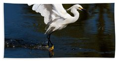 Rookery 15 Beach Towel
