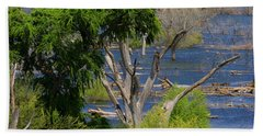 Roosevelt Lake Rising To New Height Beach Towel by Tom Janca