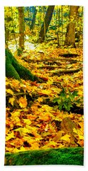 Root Steps Beach Towel by Zafer Gurel