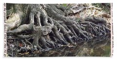 Roots With Verse Psalm 1 3 Beach Sheet