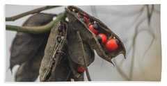 Rosary Pea Beach Towel