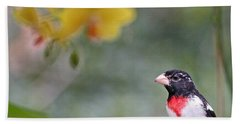 Rose Breasted Grosbeak Photo Beach Towel by Luana K Perez