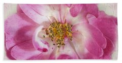 Beach Towel featuring the photograph Rose by Elaine Teague