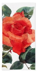 Watercolor Of A Single Red Rose I Call Red Rose Filip Beach Towel