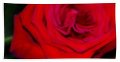Special Rose For  Valentines Day. Rose. Hearts Beach Sheet