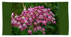 Rose Milkweed Beach Towel