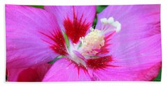 Rose Of Sharon Hibiscus Beach Sheet by Patti Whitten