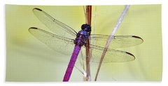 Roseate Skimmer Dragonfly Beach Towel
