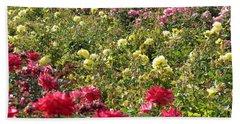 Roses Roses Roses Beach Sheet by Laurel Powell