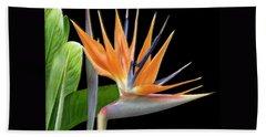 Royal Beauty I - Bird Of Paradise Beach Sheet