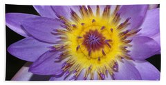 Royal Purple Water Lily #12 Beach Towel
