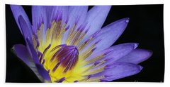 Royal Purple Water Lily #14 Beach Sheet
