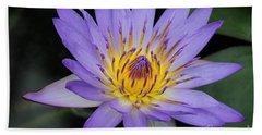 Royal Purple Water Lily #4 Beach Towel