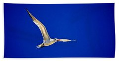 Beach Sheet featuring the photograph Royal Tern 2 by Ludwig Keck