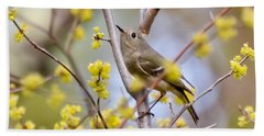 Beach Sheet featuring the photograph Ruby-crowned Kinglet by Kerri Farley