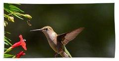 Ruby Throat Hummingbird Beach Sheet by Kathy Eickenberg