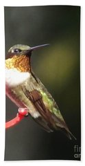 Ruby Throated Hummingbird 2 Beach Towel
