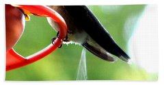 Ruby-throated Hummingbird Pooping Beach Sheet