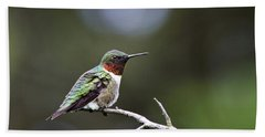 Ruby Throated Hummingbird Spotlight Beach Towel