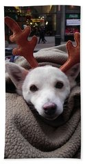 Rudolph Beach Towel