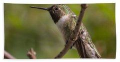 Rufous Hummingbird Beach Sheet