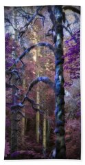 Beach Towel featuring the photograph Sacred Forest by Amanda Eberly-Kudamik