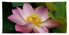 Sacred Lotus Beach Sheet