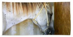 Beach Towel featuring the photograph Saddle Break by Kathy Barney
