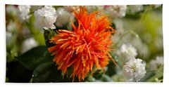 Safflower Amongst The Gypsophilia Beach Sheet
