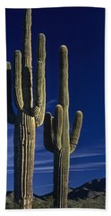 Saguaro Cactus Sunset Arizona State Usa Beach Sheet