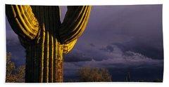 Saguaro Cactus Sunset At Dusk Arizona State Usa Beach Sheet