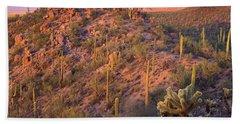 Saguaro National Park Beach Towel