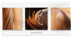Salon D'equus Dark Beach Sheet by Michelle Twohig