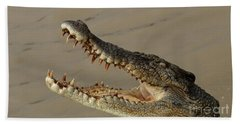 Salt Water Crocodile 1 Beach Towel by Bob Christopher