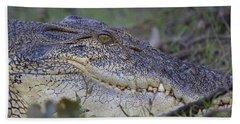 Saltwater Crocodile Beach Towel by Venetia Featherstone-Witty
