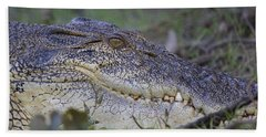 Saltwater Crocodile Beach Sheet by Venetia Featherstone-Witty