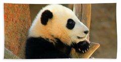 San Diego Zoo Panda Bear Xiao Liwu Beach Towel
