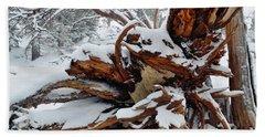Beach Sheet featuring the photograph San Jacinto Fallen Tree by Kyle Hanson