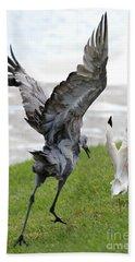 Sandhill Chasing Ibis Beach Towel by Carol Groenen