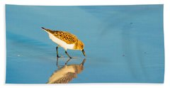 Sandpiper Mirror Beach Sheet by Susan Molnar