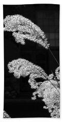 Santa Fe Feather Duster Beach Sheet