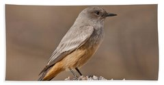Say's Phoebe On A Fence Post Beach Sheet