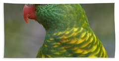 Scaly-breasted Lorikeet Australia Beach Towel