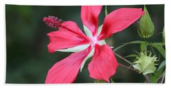 Beach Towel featuring the photograph Scarlet Hibiscus #3 by Paul Rebmann